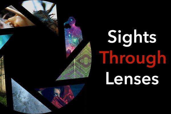 Sights Through Lenses